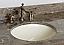 Adelina 64 inch Antique Double Sink Bathroom Vanity