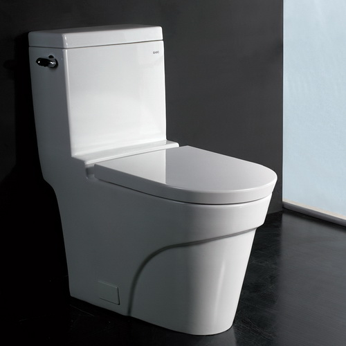 Ariel Platinum TB326M Contemporary European Toilet