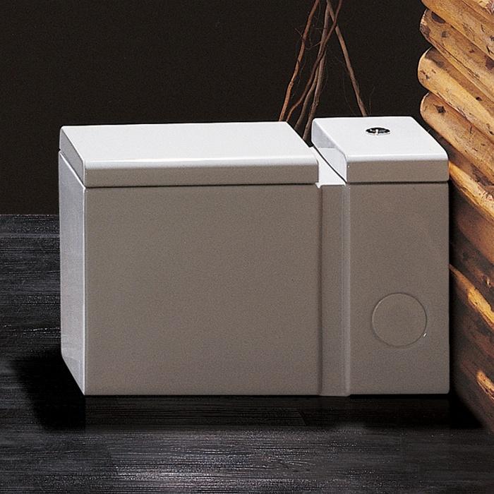 Ariel Platinum TB333M Contemporary Toilet
