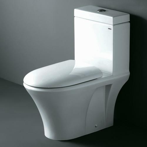 Ariel Contemporary European Toilet with Dual Flush