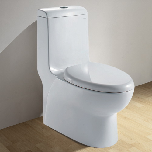 Ariel Fully Glazed Inner Part European Toilet