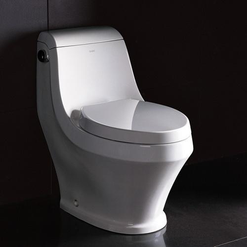 Ariel Platinum One Piece Stain Resistant European Toilet