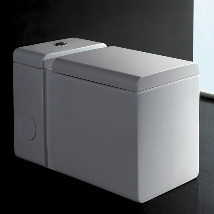 Ariel Platinum One Piece Contemporary European Toilet