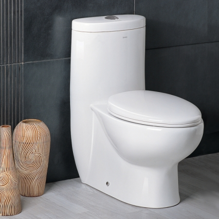 Ariel Platinum One Piece Toilet with Dual Flush