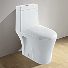 Ariel Contemporary  Fully Glazed Inner Part Toilet Dual Flush