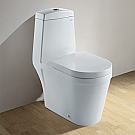 Ariel One Piece Contemporary Toilet with Dual Flush