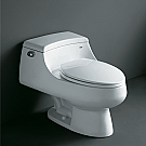 Ariel Contemporary European Double Flush Toilet