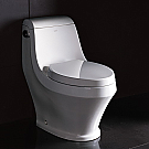 Ariel Platinum One Piece Stain Resistant European Toilet