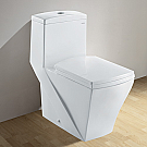 Ariel Contemporary Toilet with Dual Flush